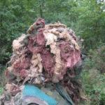 july-2008-29